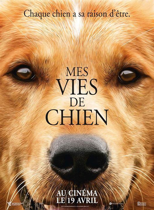 cinema - avis - mes vies de chien