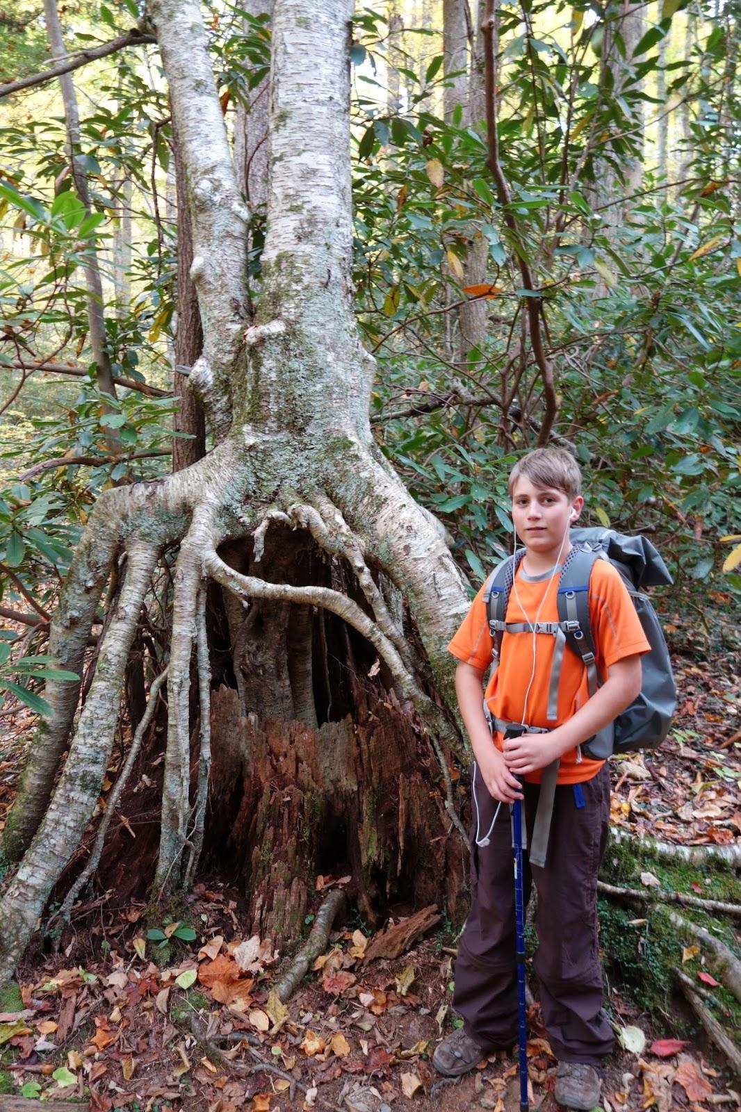 Aidan with stilt birch roots