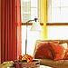 http://www.bhg.com/decorating/color/paint/orange-home-decorating-ideas/#page=15