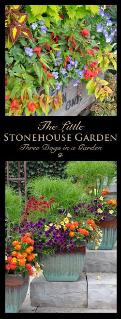 The Little Stonehouse Garden