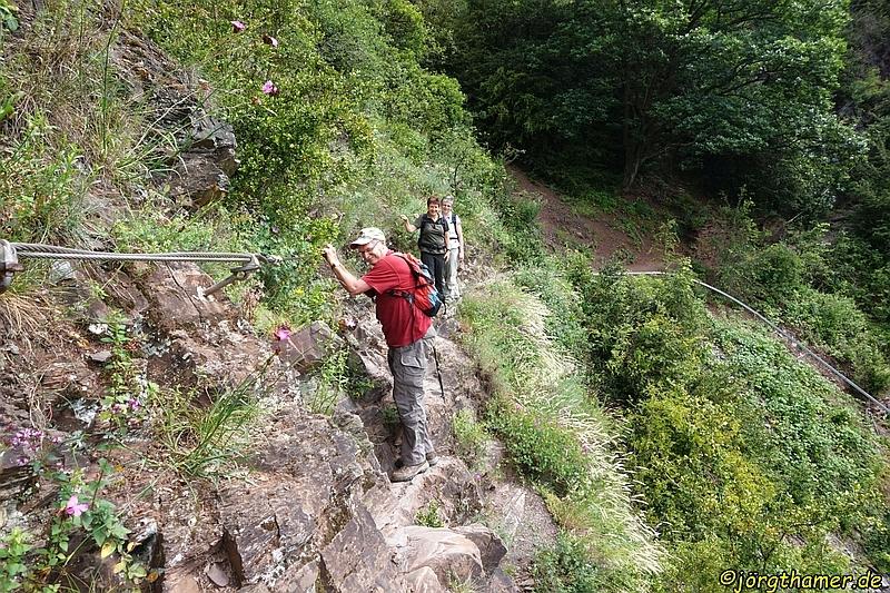 Klettersteig Ardennen : Ardennen summer camps holland