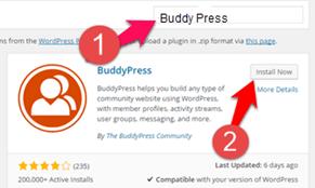 wordpress search me buddy-press plugin ko search kare