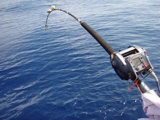 Memancing yaitu salah satu aktivitas yang sangat menyenangkan baik itu dilakukan bersama k Nah ! Cara Memancing Di Laut Dalam Dengan Benar