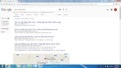 Tìm dịch vụ cây cảnh trên Google