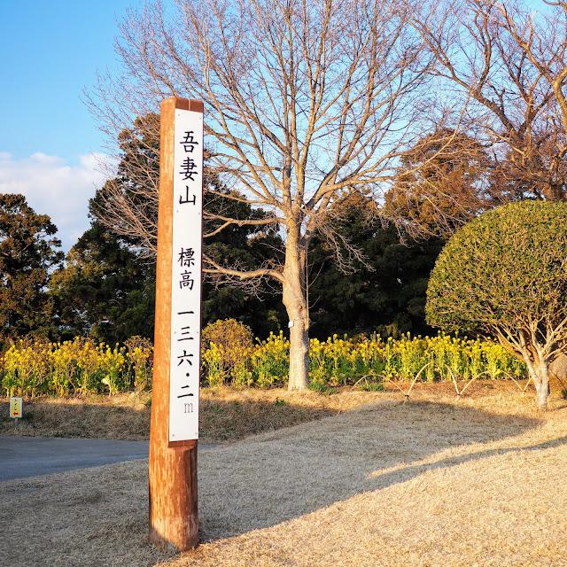 二宮 吾妻山公園 標高136.2m