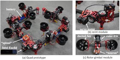 Un robot drago que pot volar per espais reduïts