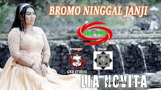 Lirik Lagu Bromo Ninggal Janji - Lia Novita