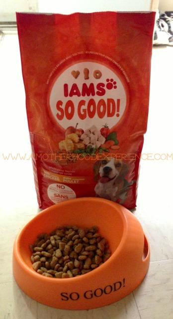 Bad Things In Iams Dog Food