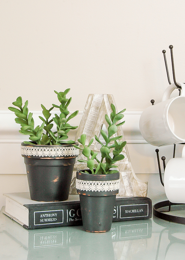 Dollar Tree terra cotta pots and succulents