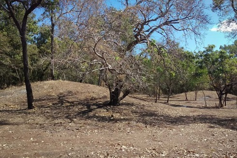 Des lieux de sépultures aborigènes confirmés dans la péninsule du Cap York en Australie