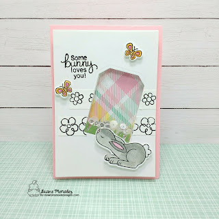 Some Bunny | a card by Diane Morales | Bitty Bunnies Stamp Set by Newton Nook Designs