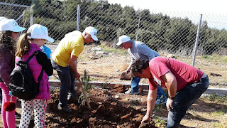 Let's do it Greece στην Τριφυλία από φορείς