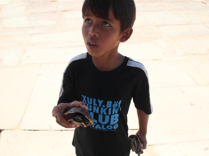 Niño Tortugas Angkor Wat