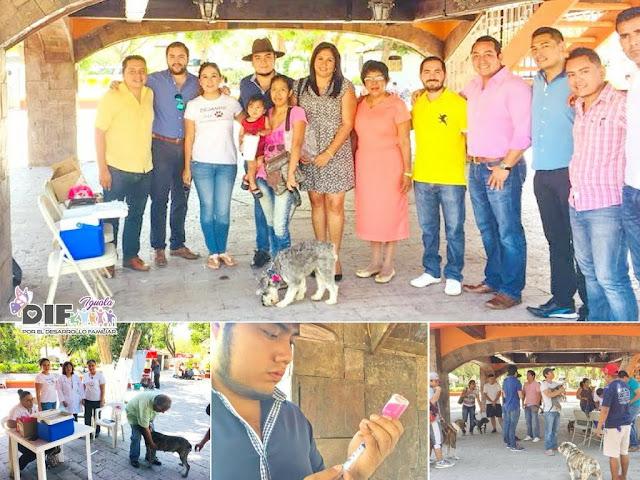 Instalan módulo de Vacunación antirrábica en el Zócalo de Iguala