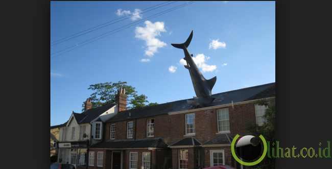 Headington Shark, Inggris