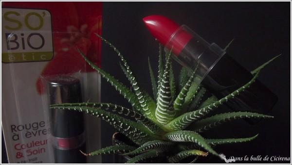 So'Bio Etic, rouge à lèvres, rouge à lèvres rouge, rouge à lèvres bio