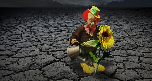 Clown Watering a Single Flower in the Middle of Dry, Cracked Soil