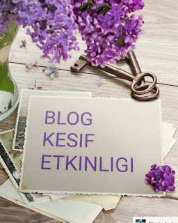 https://delikizinbohcs.blogspot.co.at/p/kesif-etkinligine-katlan-bloglar-listesi.html