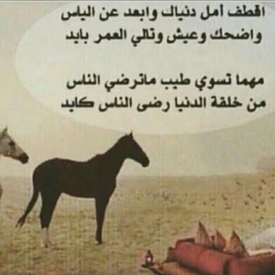 حكمة اليوم عن حسن الخلق
