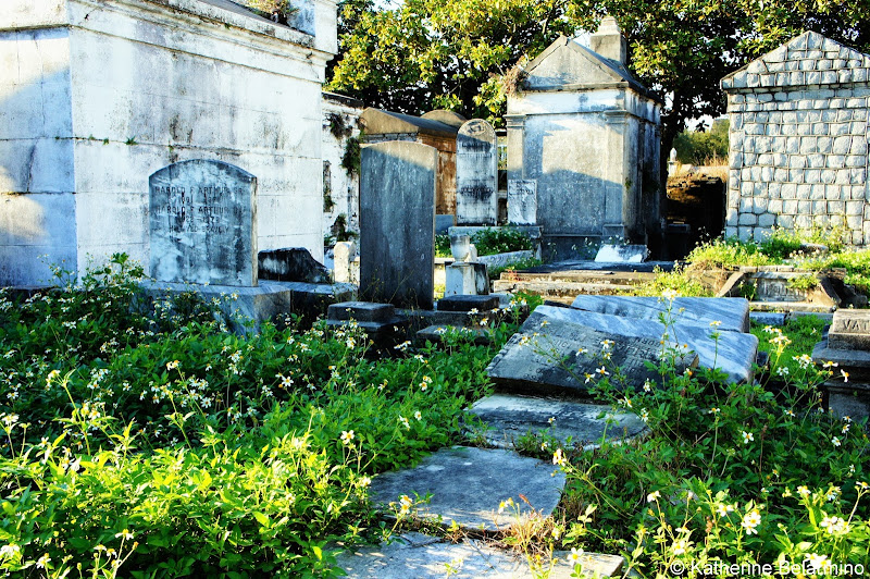 Lafayette Cemetery No. 1 Things to Do in New Orleans