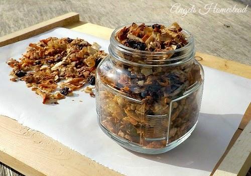 Home Sweet Homestead: Grain Free Granola