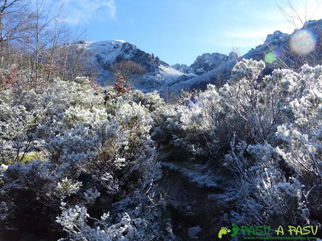 Ruta Gumial: Nieve