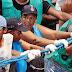 CRISE: 10 mil cordeiros não serão contratados no carnaval 2017