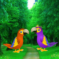 Games2rule Macaw Parrot L…