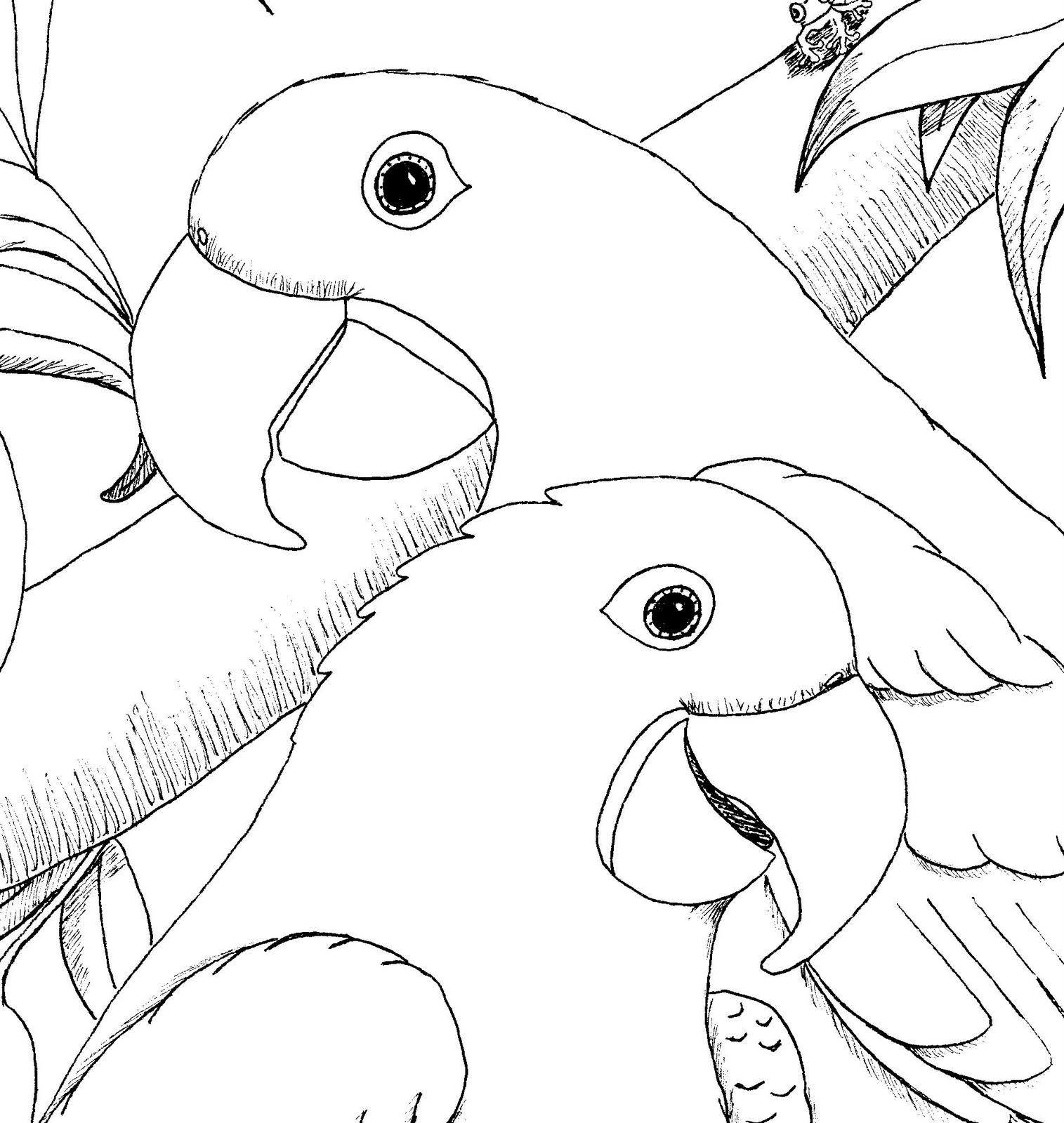 Kleurplaten Vogels.Kleurplaten Dieren Papagaaien Kleurplaten Vogels Tekeningen