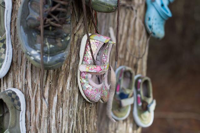 Floresta misteriosa cheia de sapatos é encontrada