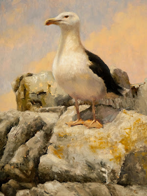 Imperious Great Black Backed Gull (detail) oil painting Shannon Reynolds