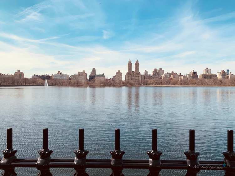 The track around the reservoir in Central Park is a great place for a run | Ms. Toody Goo Shoes