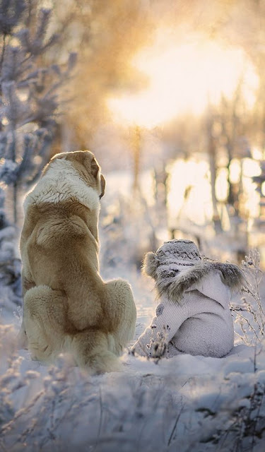 Beautiful winter scene with dog and baby in snow
