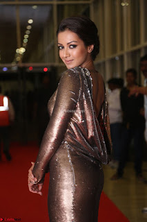 Actress Catherine Tresa in Golden Skin Tight Backless Gown at Gautam Nanda music launchi ~ Exclusive Celebrities Galleries 042.JPG