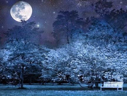 Konsep Taman Moonlight