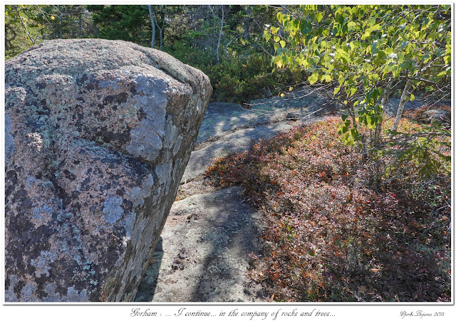 Gorham: ... I continue... in the company of rocks and trees...