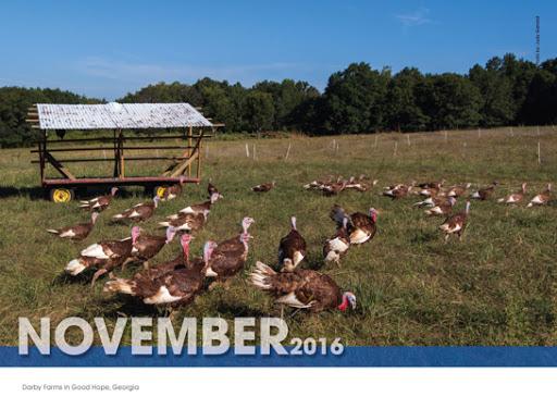 November Coolray Calendar