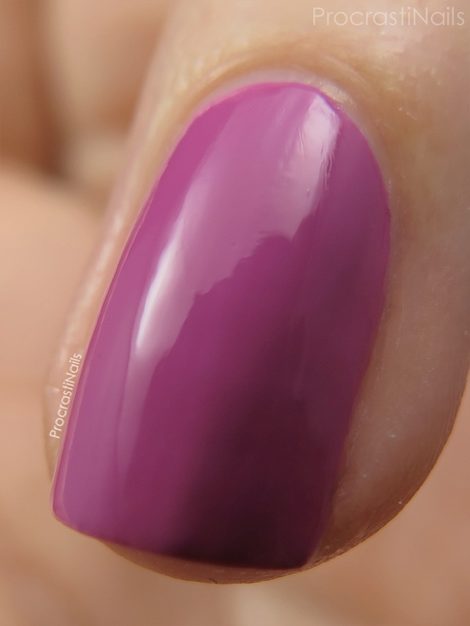 Macro of Crushed Rose from the CND Vinylux Garden Muse Collection