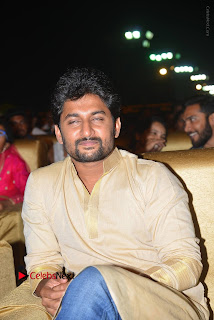 Nenu Local Audio Launch Stills  0050.JPG