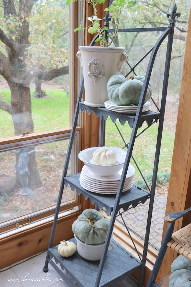 French zinc plate stand with fall pumpkins overlooks backyard meadow