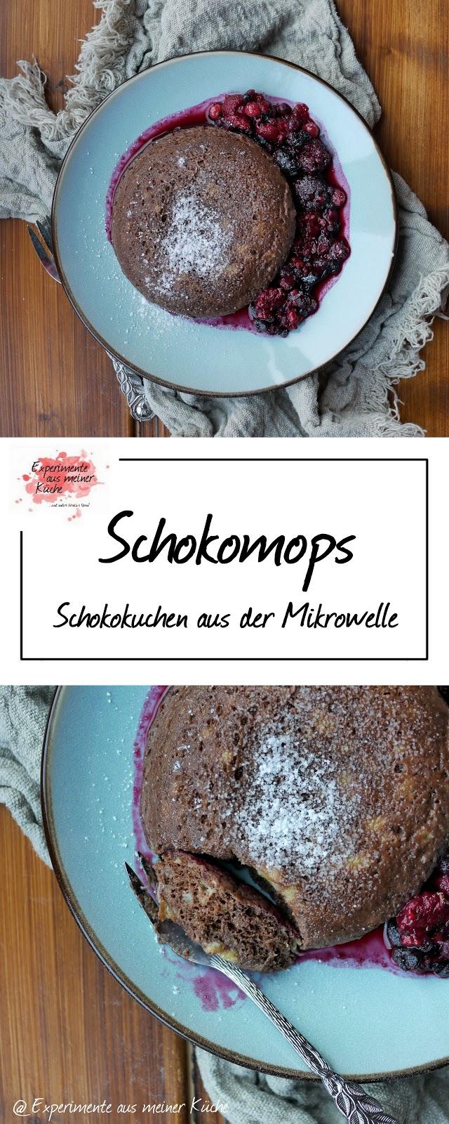 Experimente Aus Meiner Kuche Schokomops Kuchen Aus Der Mikrowelle