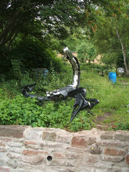 scary upcycled metal scorpion sculpture emerges out of the greenery at windmill hill city farm allotments