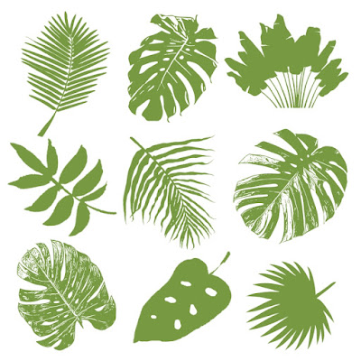 palm leaf, split leaf philodendrom, fan palm, areca palm, banana leaf, fern leaf, papyrus leaf, jungle leaf, jungle leaves, jungle tropical leaf, jungle leaf brush photoshop, forest leaf, tropical leaf surface pattern leaf, textile design element set, jungle leaf set pattern design, pattern design motif, motif leaf, motif leaves jungle