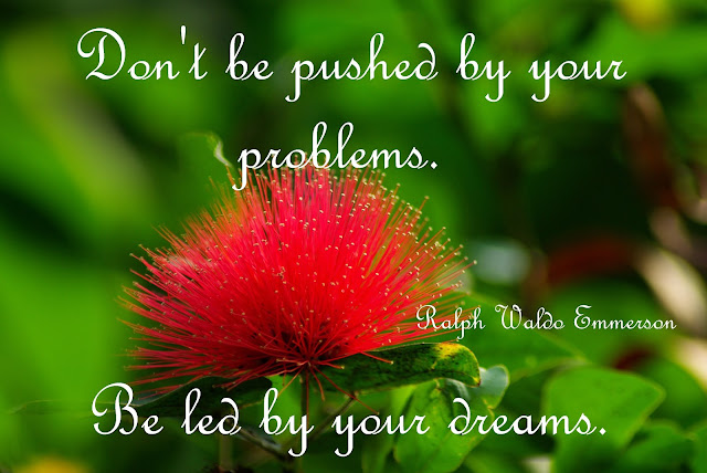 Don´t be pushed by your problems. Be led by your dreams - Ralph Waldo Emmerson