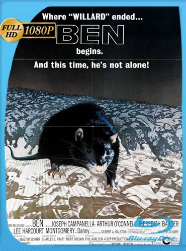 Ben La Rata Asesina (1978)HD [1080P] latino[GoogleDrive] DizonHD