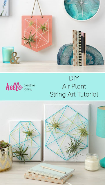 How to make air plant string art.