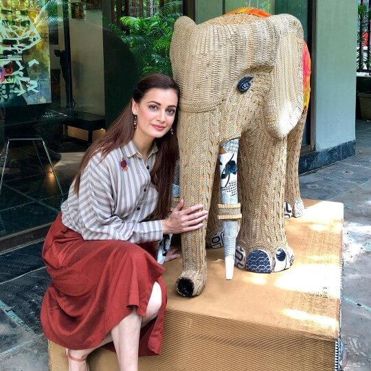 Dia Mirza releases Indias first wildlife anthem