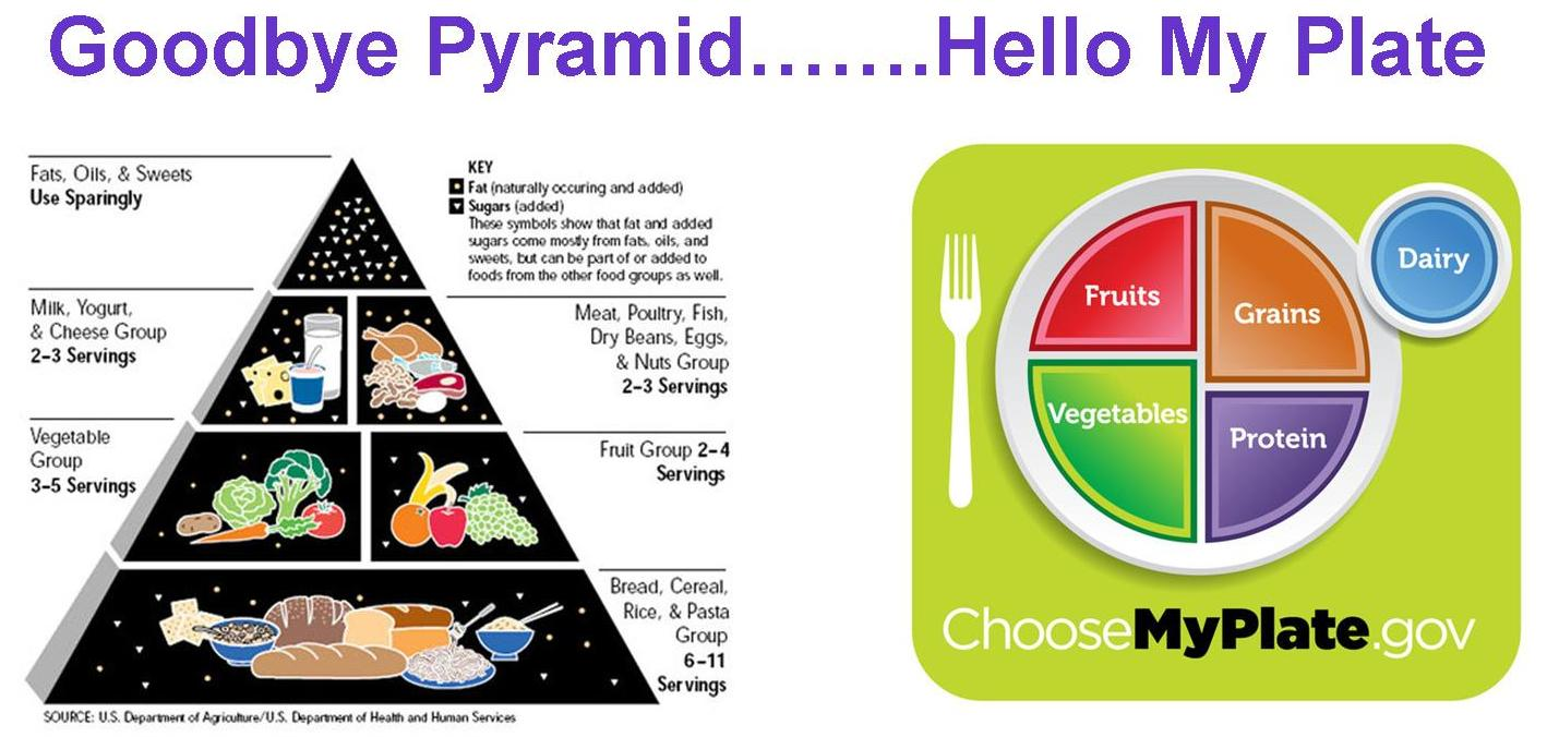 Food and Thought: Goodbye Pyramid, Hello MyPlate