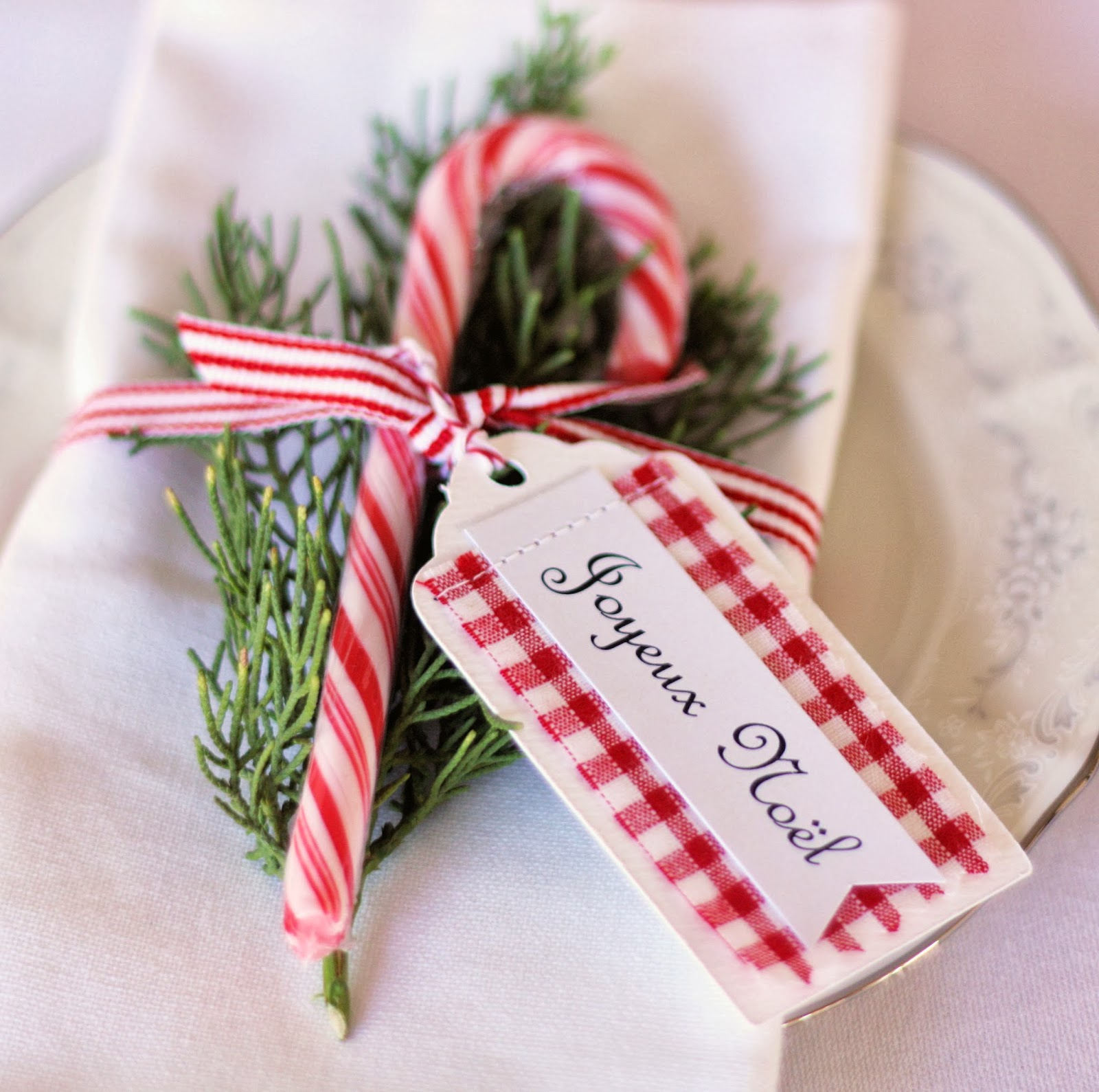 Holiday Place Settings: Christmas Place Card Ideas