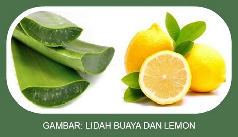 Lidah Buaya dan Lemon
